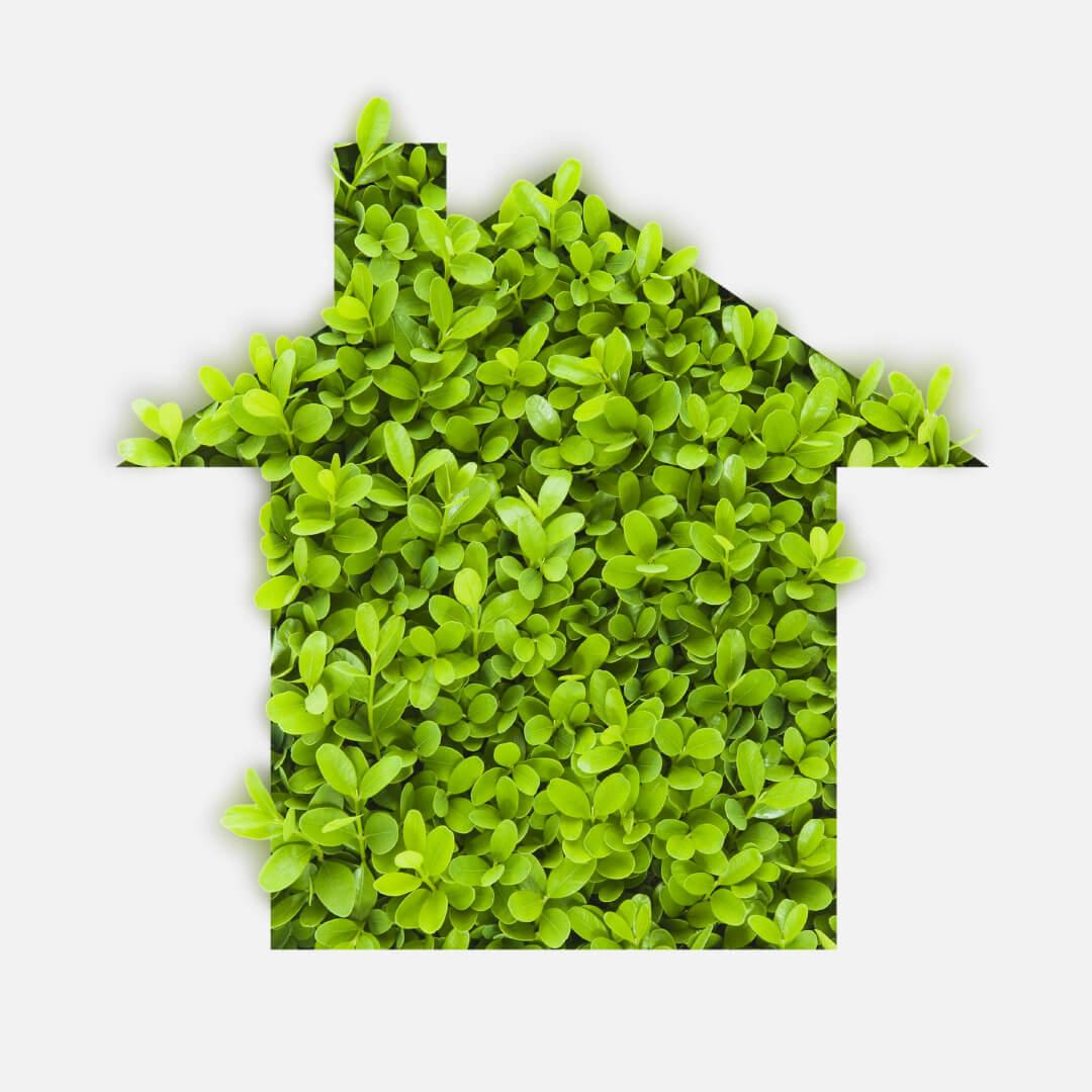 Servizi Green Systems srl progetti green