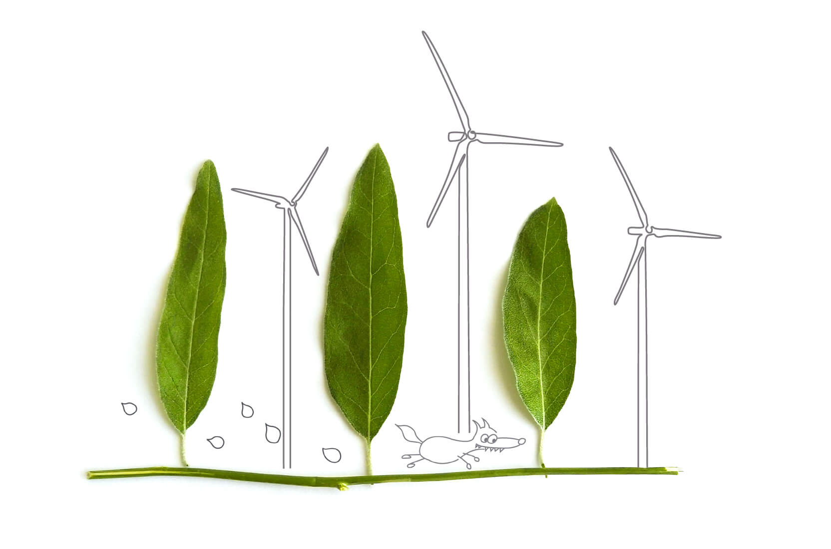 Tecnologia Green Systems srl minieolico